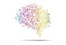 Lider i jego mózg. Zasada nr 4 – Zaufaj intuicji